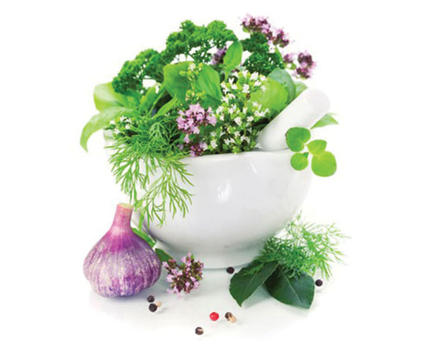 Herbs de Provence Olive Oil