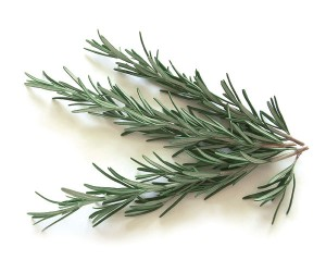 Whole Herb Rosemary Olive Oil