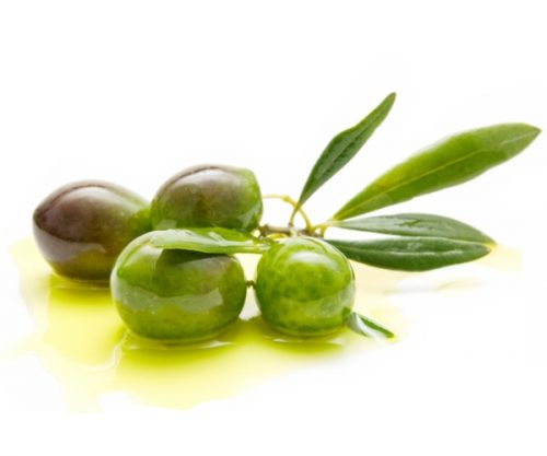 foodie recipes gourmet olive oil